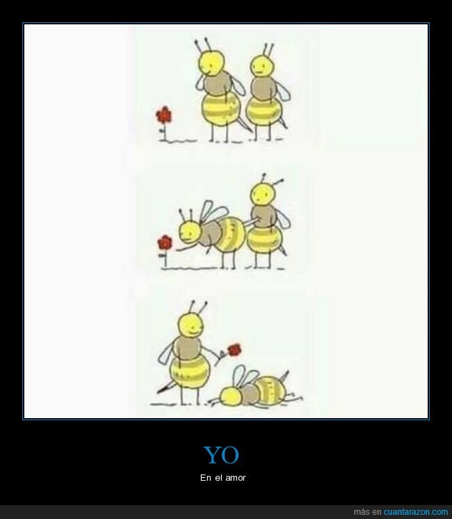 abejas,aguijón,amor,flor