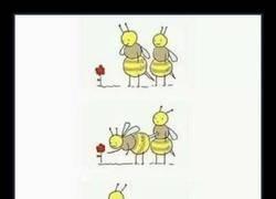 Enlace a El amor es complicado a veces
