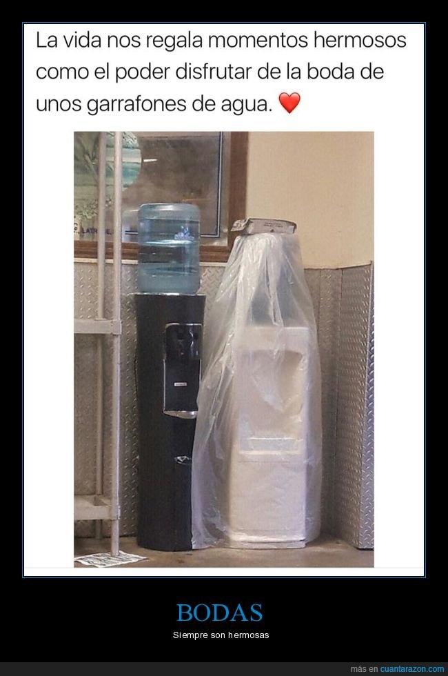 agua,boda,garrafones