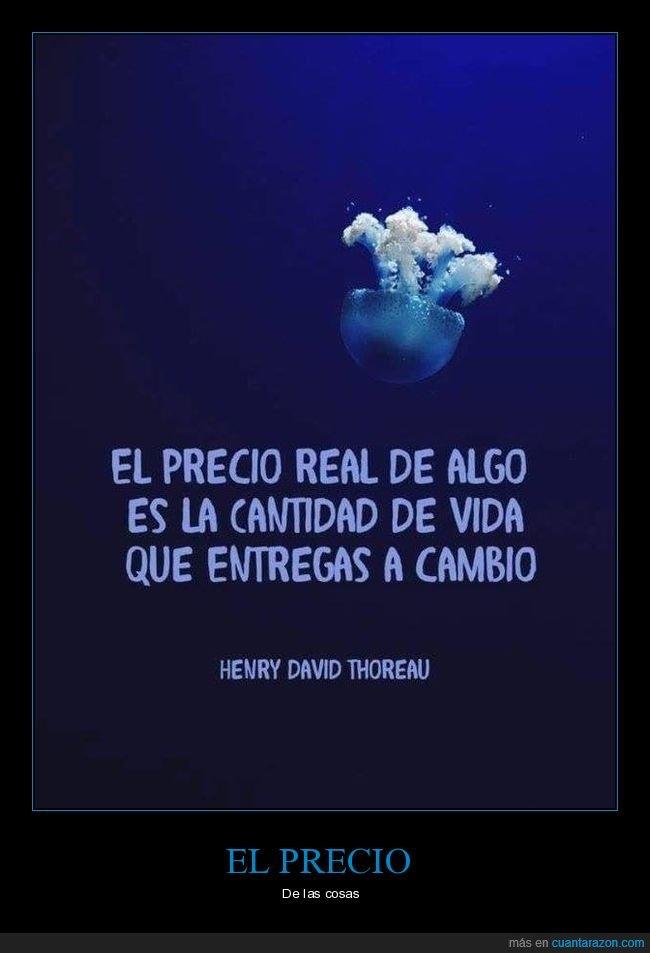 precio,real,tiempo,vida