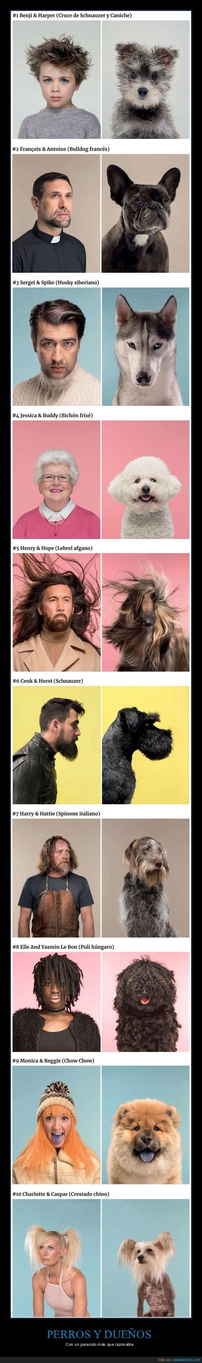 dueños,parecidos,perros