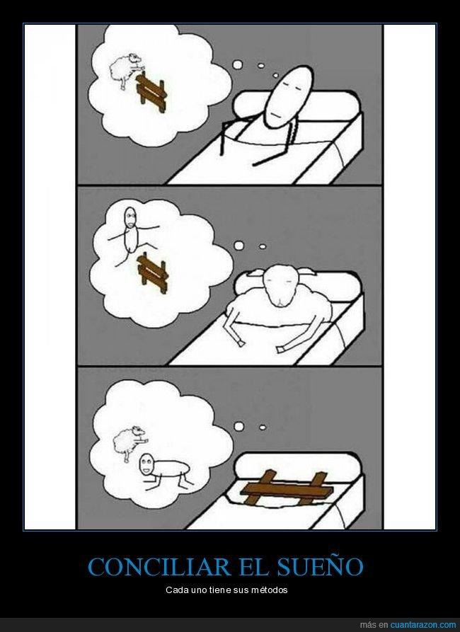 dormir,oveja,valla