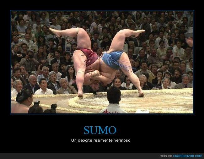postura,sumo,wtf