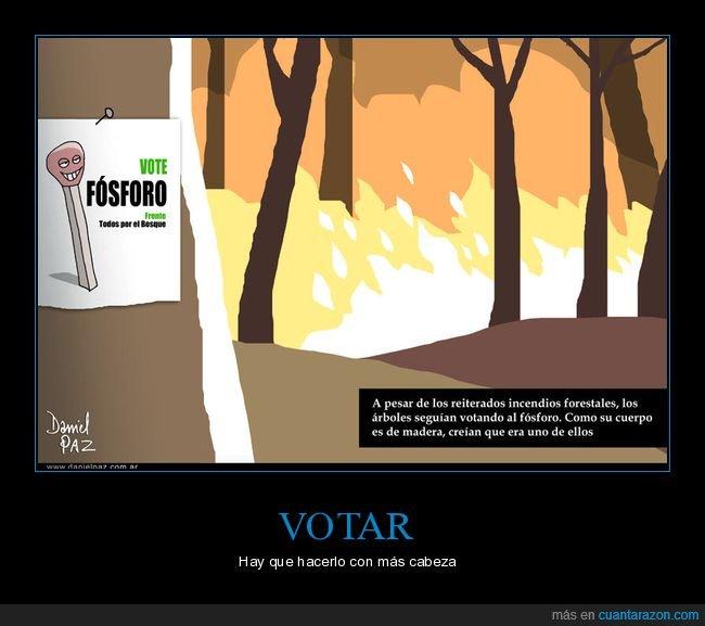 árboles,fósforo,madera,políticos,votar