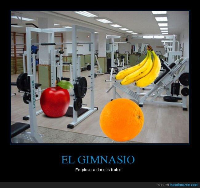 absurdo,frutos,gimnasio