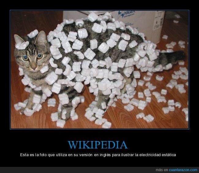 electricidad estática,gato,wikipedia