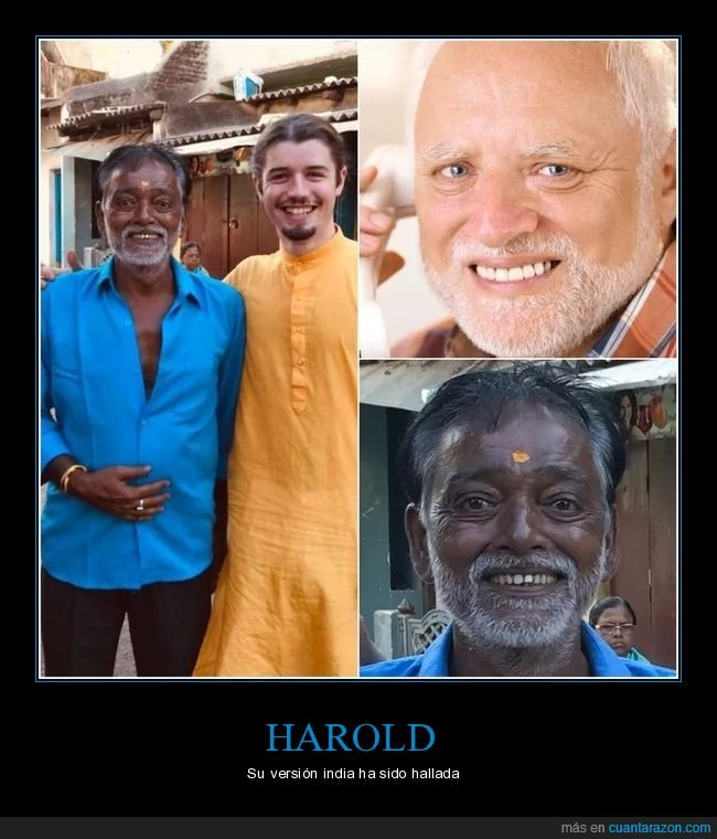 hide the pain harold,indio,parecidos