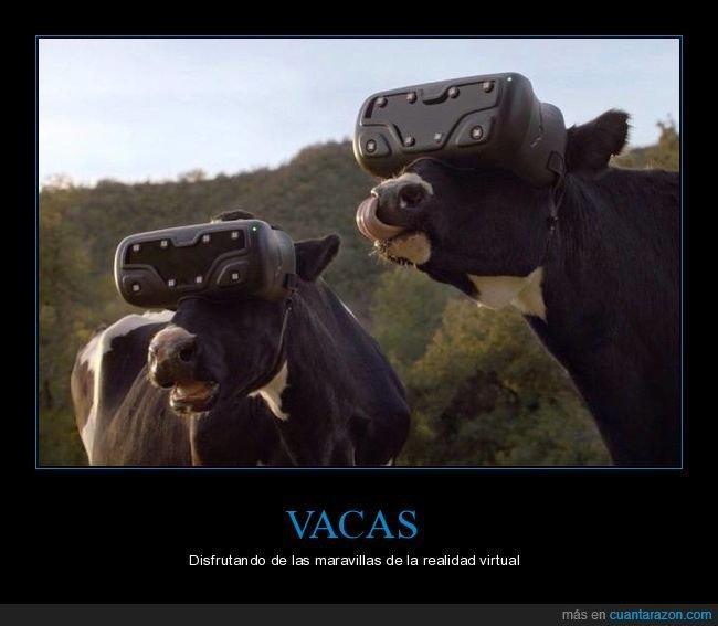 realidad virtual,vacas,wtf