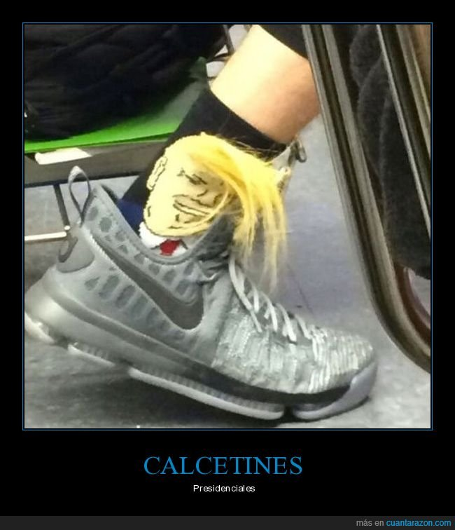 calcetines,donald trump,pelo