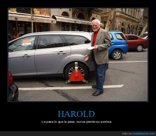 cepo,coche,hide the pain harold