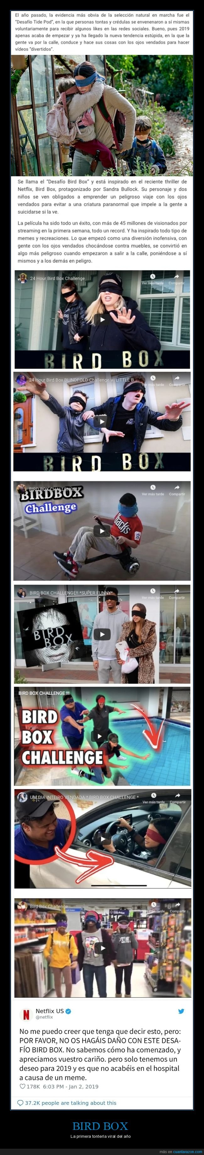 bird box,netflix,película,viral