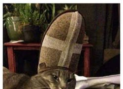 Enlace a Gato eclesiástico