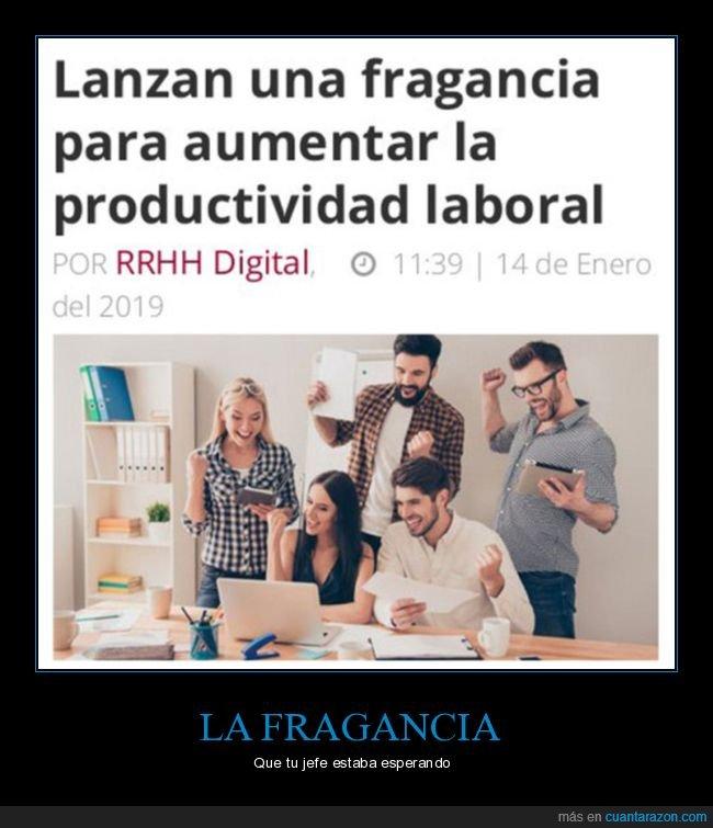 fragancia,noticias,olor,productividad