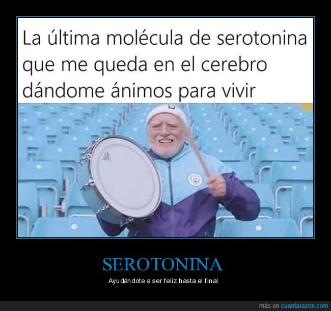 ánimos,cerebro,hide the pain harold,serotonina