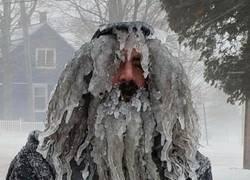 Enlace a El hombre de hielo
