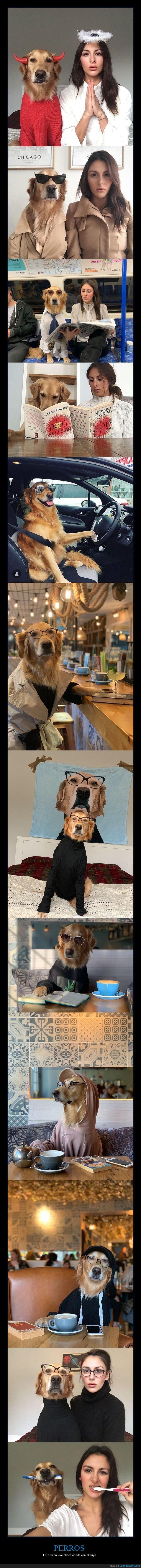 disfraces,perros