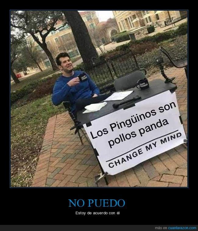 change my mind,panda,pingüinos,pollos