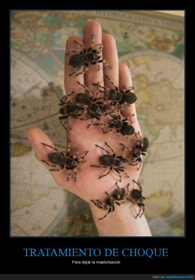 arañas,mano,wtf