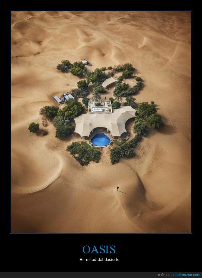 desierto,oasis