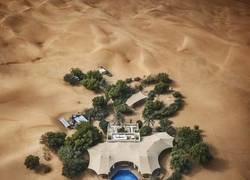Enlace a Oasis en el desierto de Al Maha, Emiratos Árabes Unidos.
