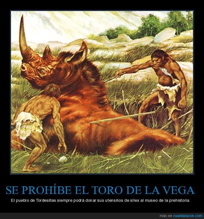 prehistoria,prohibición,tordesillas,toro de la vega