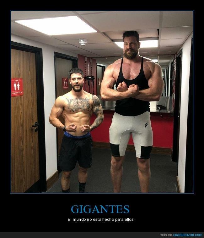 alto,estatura,gigante,techo
