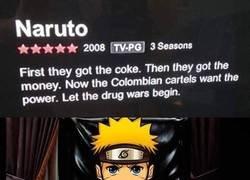 Enlace a NARCUTO, ya en Netflix
