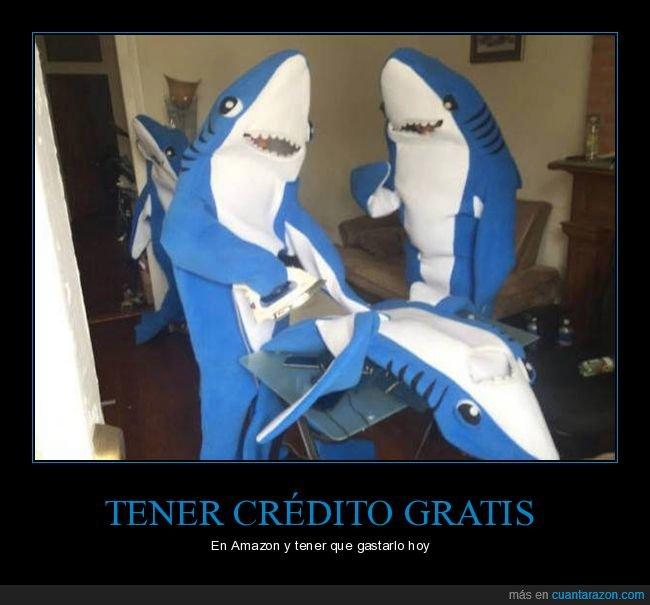 disfraz,tiburón
