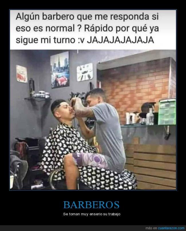 barbero,peluquero,silla,wtf