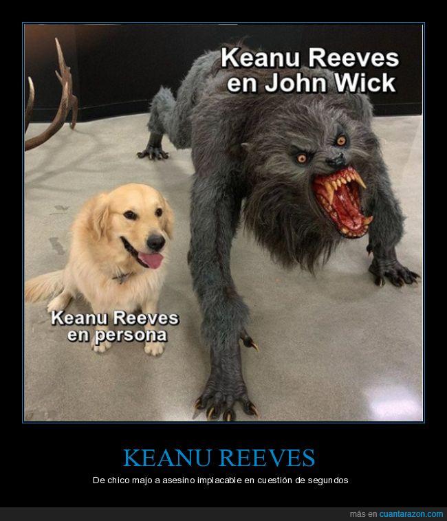 en persona,hombre lobo,john wick,keanu reeves,perro