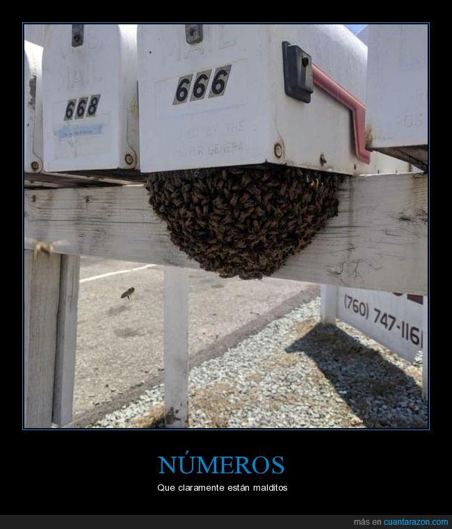 666,abejas,buzón,wtf