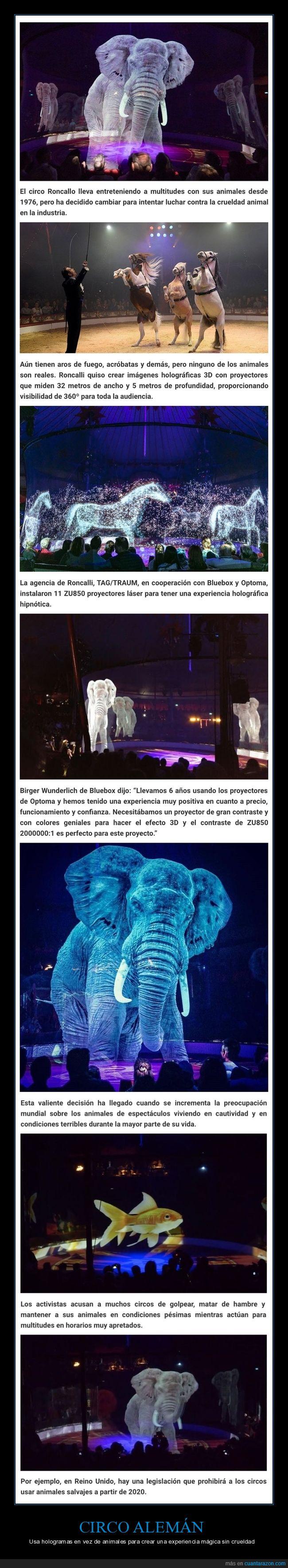 circo,hologramas.animales