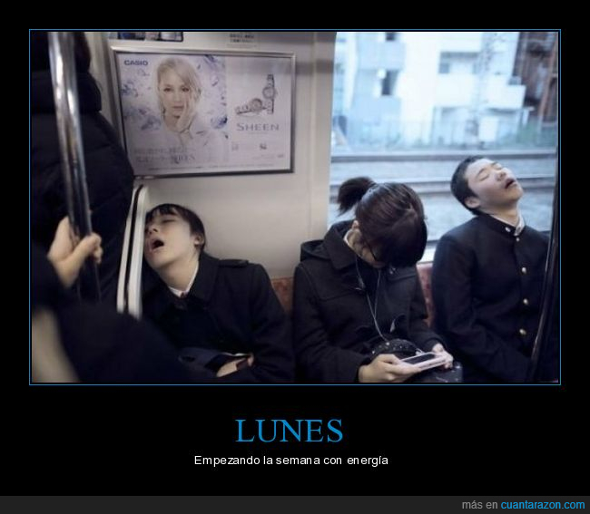 durmiendo,lunes,tren