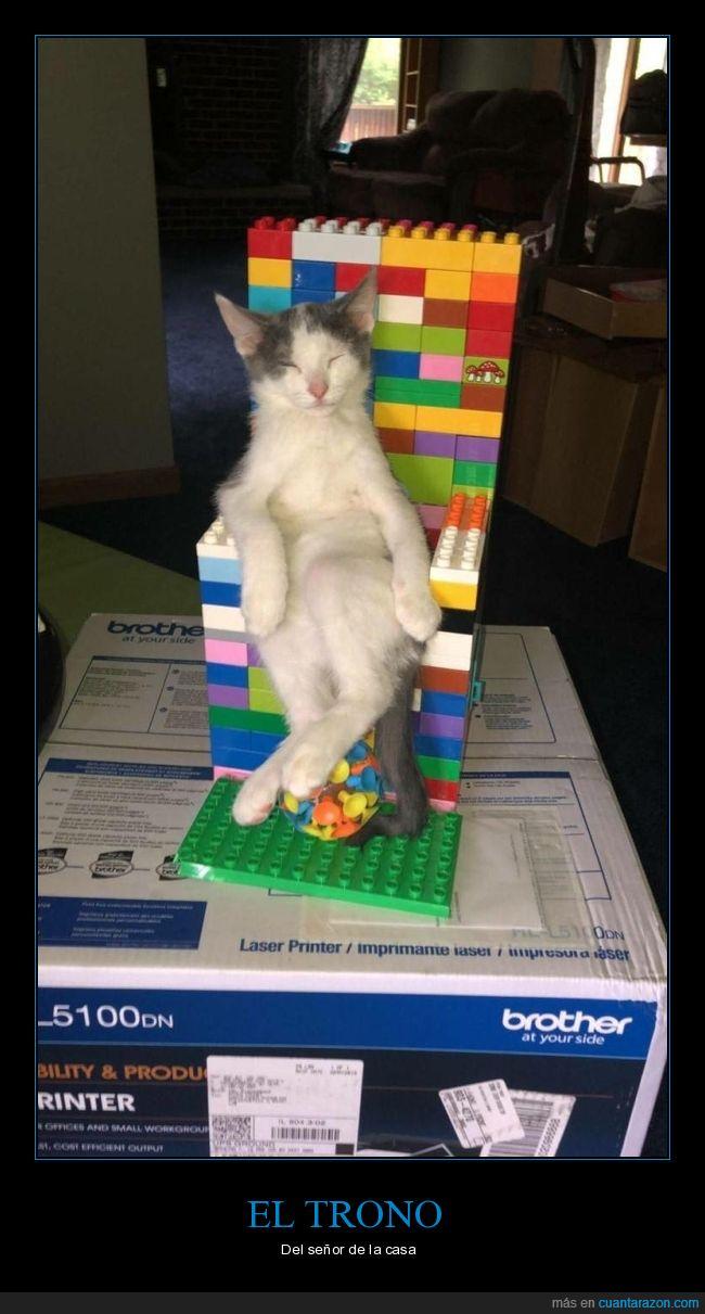 gato,lego,trono