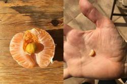 Enlace a Naranja con sorpresa