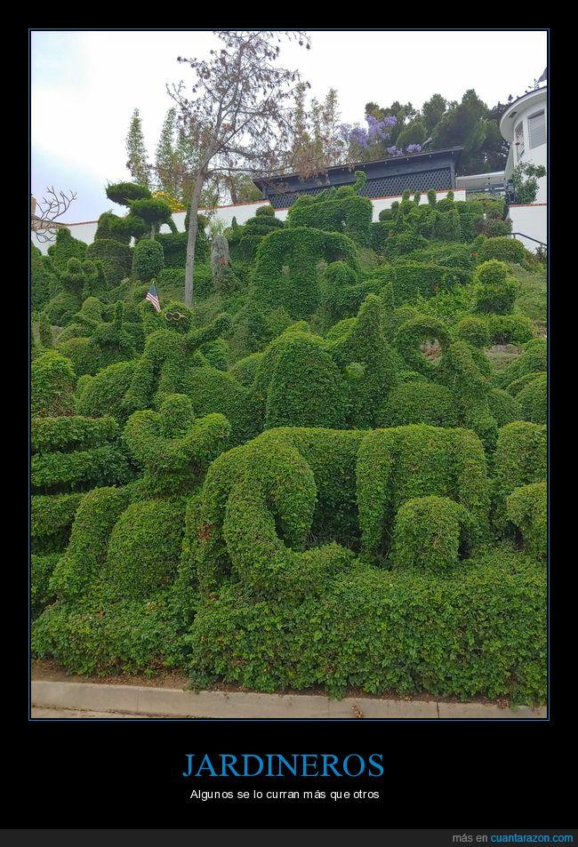 formas,jardinero,plantas