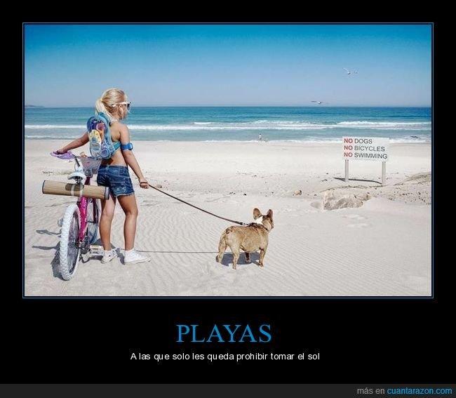 bicicletas,cartel,nadar,niña,perros,playa,prohibiciones