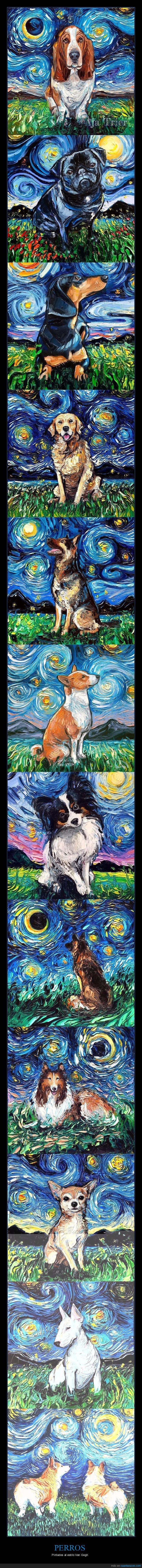 la noche estrellada,perros,pinturas,van gogh