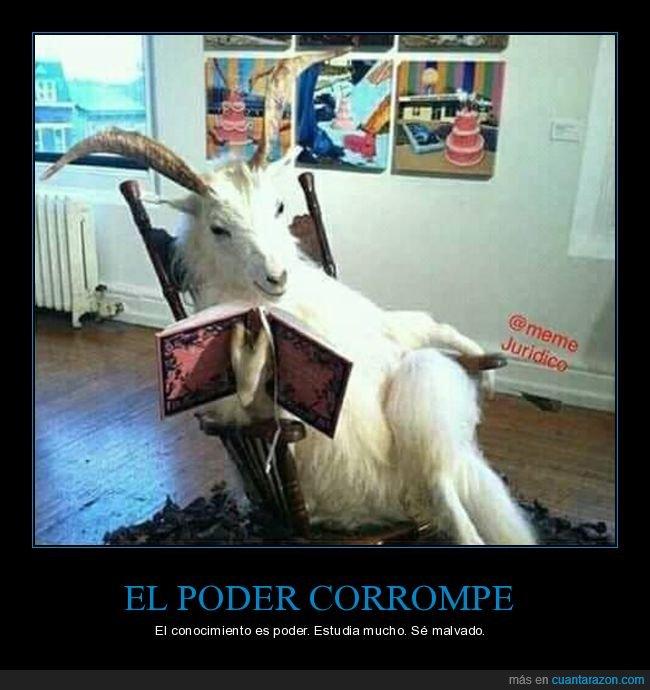 cabra,conocimiento,corromper,estudiar,malvado,poder