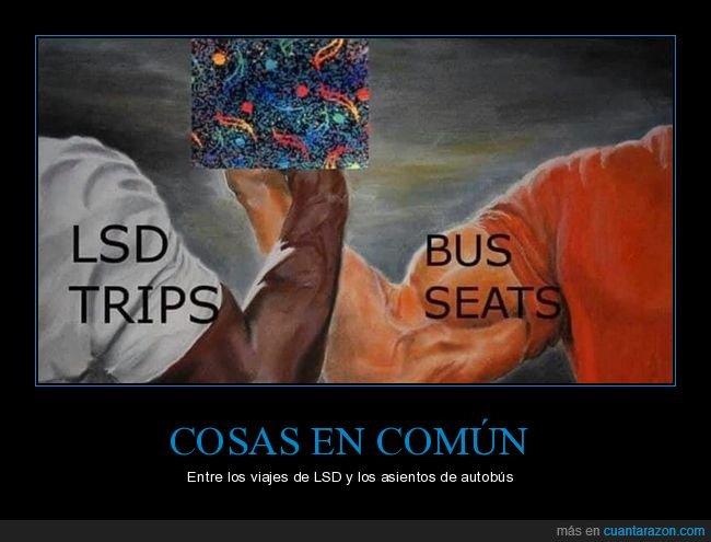 absurder,asientos,autobús,en común,lsd