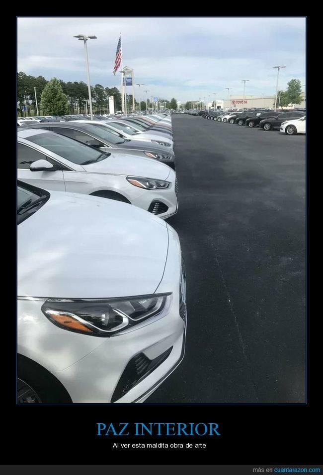 aparcados,coches,en línea,parking