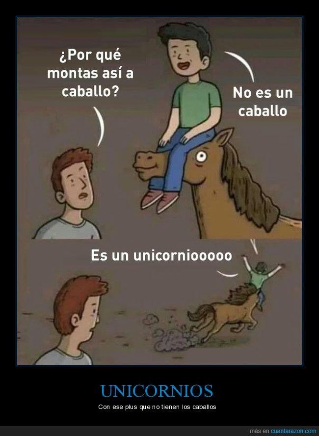 caballo,cuerno,montar,unicornio