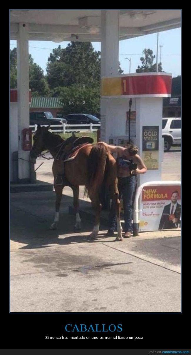 caballo,gasolinera,wtf