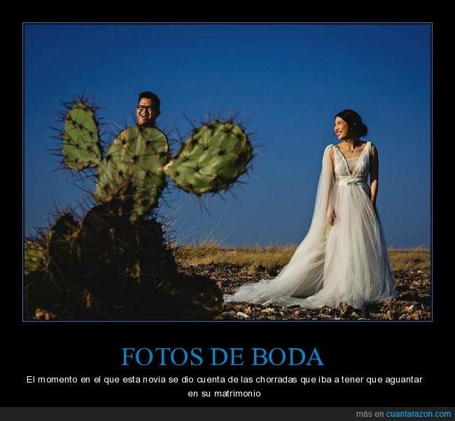 boda,cactus,fotos de boda,novio