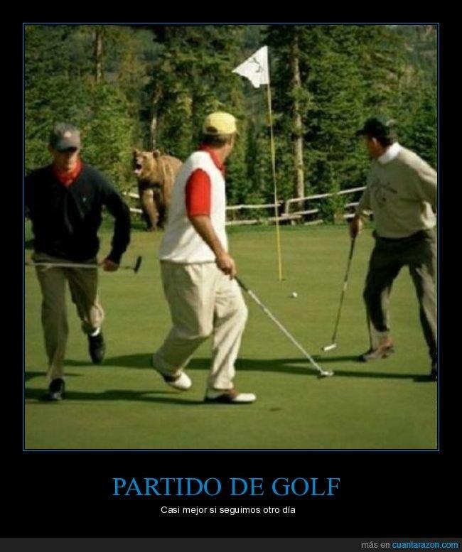 golf,oso,wtf