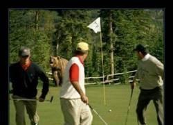 Enlace a Bastante golf por hoy