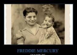 Enlace a El jovencísimo Freddie