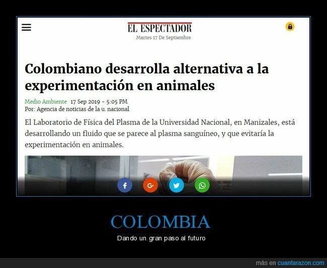 animales,avance,colombia,experimentos,plasma,sangre