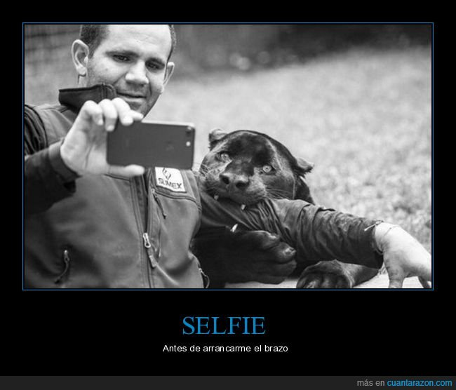 mordiendo,pantera,selfie