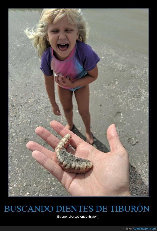 buscando,dentadura,dientes,hija,padre,playa,tiburón
